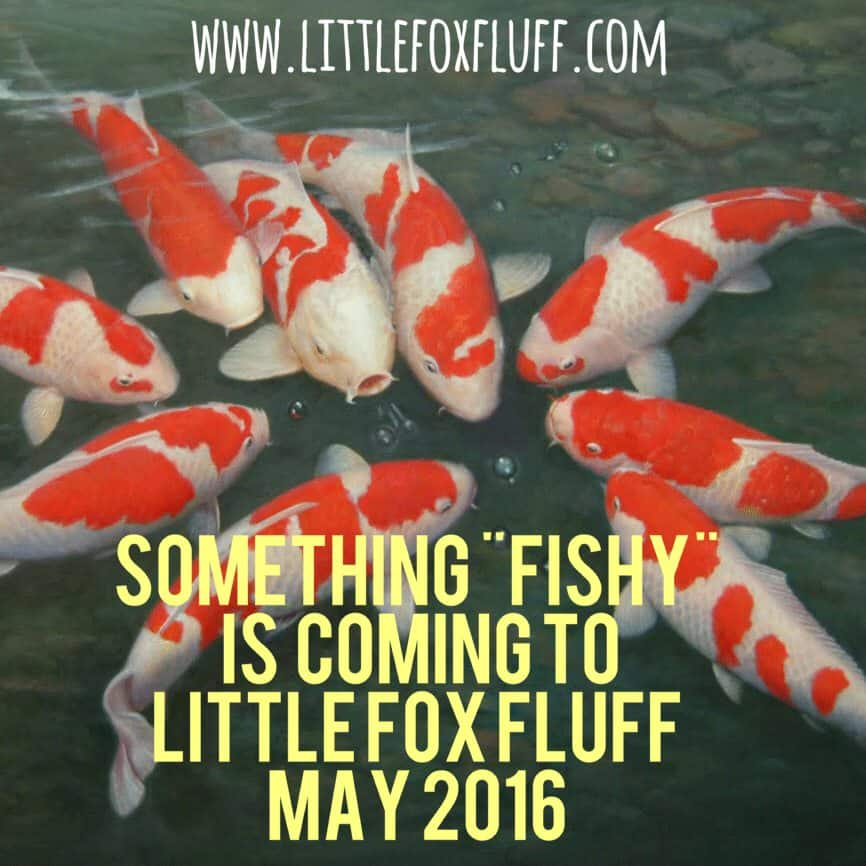 SmartBottoms EXCLUSIVE to Little Fox Fluff
