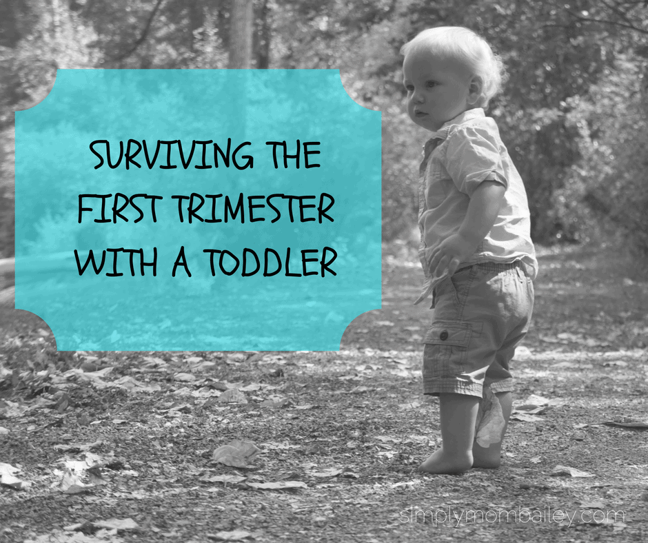 First Trimester with a Toddler