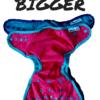 Best Bottom Bigger Cloth Diaper Comparison