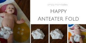5 Reasons to LOVE the Happy Anteater Fold