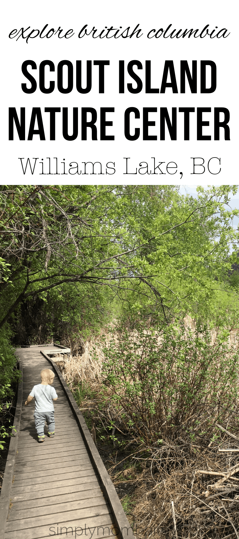 Roadtrip from Vancouver stop in Williams Lake, BC to check ou the scout island nature centre with kids. #roadtriptoAlaska #travelbc #travelcanada #canadawithkids #beautifulbritishcolumbia #bcparks #natureparks #thingstodowithkids #familythingscanada #familytravel