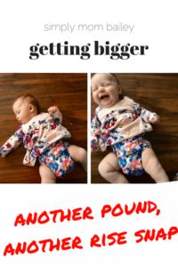 Smart Bottoms Too Smart Cover Cloth Diaper - Marys Garden