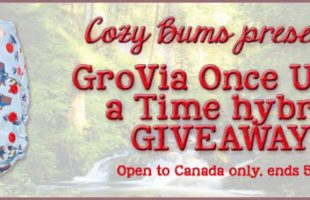 CozyBums Giveaway – GroVia Once Upon A Time Hybrid