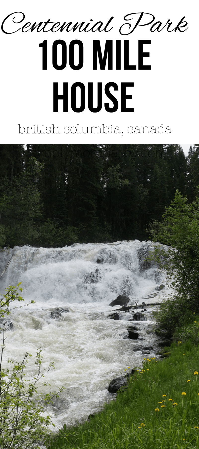 Check out Bridge Creek Falls in Centennial Park, 100 Mile House. This simple park offers stunning waterfalls and playgrounds for families traveling in and around british columbia #roadtriptoAlaska #exploreBC #travelCanada #canadianroadtrip #cariboo #britishcolumbia #traveltrips #travelwithkids #bcparks #CanadianParks #waterfalls