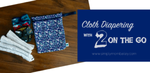 Cloth Diapering 2 on the Go with Planet Wise Wet/Dry Bag
