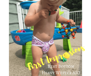 First Impressions - Best Bottom AIO - Best Bottom Heavy Wetter AIO - Cloth Diaper Review