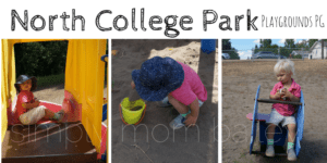 Prince George Playground – North College Park