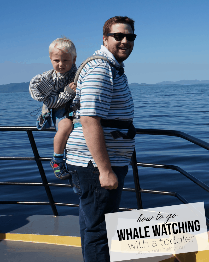 Babywearing while Whale Watching with a Toddler during Prince Rupert Adventure Tours of Northwest British Columbia