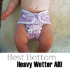 5 Reasons You Might LOVE the Best Bottom Heavy Wetter AIO