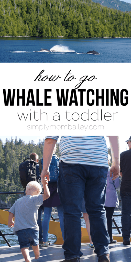 How to go Whale Watching with a Toddler - Prince Rupert Adventure Tours - Whale Watching with Kids - Things to do in Prince Rupert - Explore BC - British Columbia