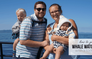Prince Rupert, BC: Whale Watching with a Toddler