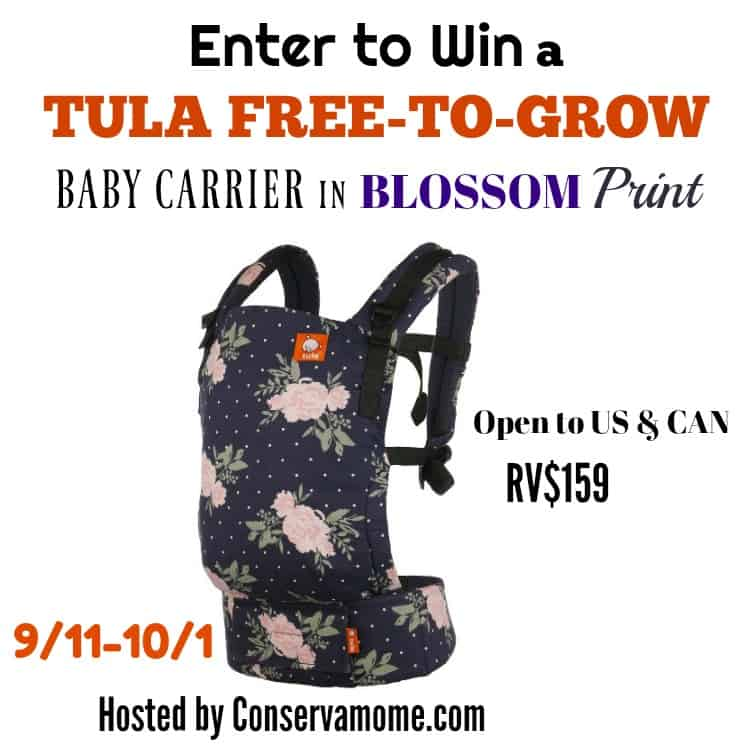 Tula Free to Grow Baby Carrier in Blossom Button