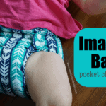 Affordable Cloth Diapers: Imagine Baby Pocket Diaper