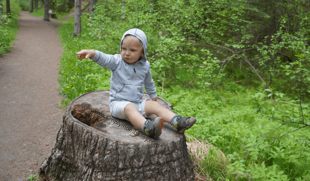 Hiking with Toddlers - Let them Climb Onto Stumps