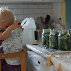 What I Learnt in A Day of Canning (or More)