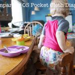 Rumparooz Pocket Cloth Diaper Review