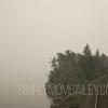 bc wildfire season