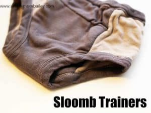 sloomb trainers side picture