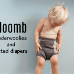GIVEAWAY about Sloomb Bamboo Fleece Fitted Diaper & Underwoolies Review