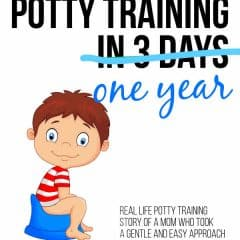 How I Potty Trained in One Year!